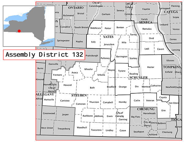 New York State's 136th Assembly District